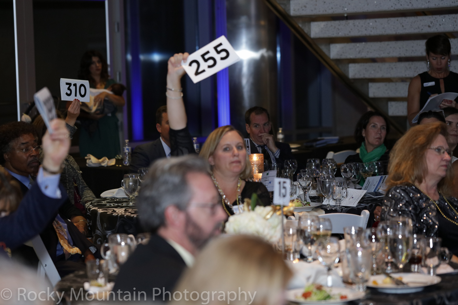 Auction, Charity & Gala-1