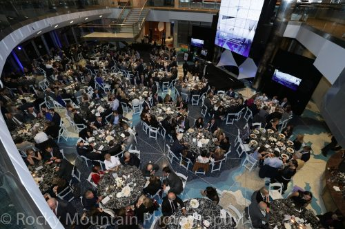 Auction, Charity & Gala-4